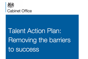 Talent Action Plan  - click to read on GOV.UK