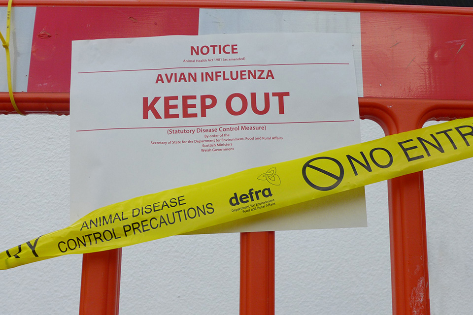 Avian Influenza sign with Defra 'No Entry' tape across it