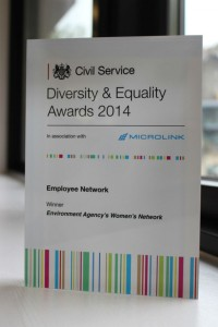 Civil Service Diversity Award 2014: Employee Network won by Environment Agency's Women's Network