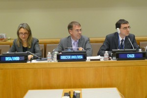 John Pullinger (right) chairing the UN Statistical Commission