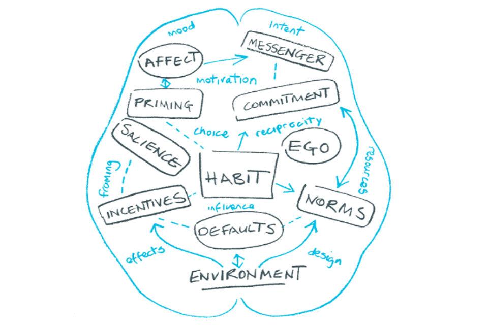 Brain-shaped flow diagram for behavioural sciences
