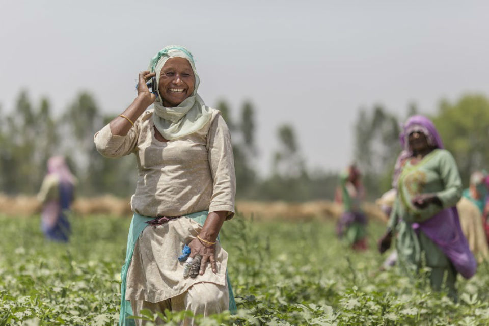 Woman with mobile phone in field of green crops