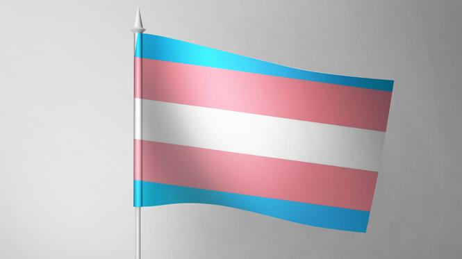 Transgender flag on flagpole