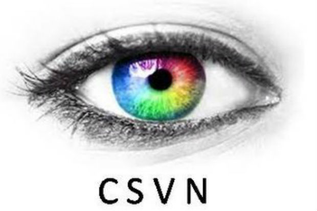 Logo of the Civil Service Visual Network with the initials 'CSVN' beneath a close-up image of an eye with the iris picked out in the colours of the rainbow