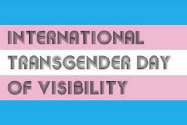 Horizontal blue, pink and white striped banner graphic with legend International Transgender Day of Visibility