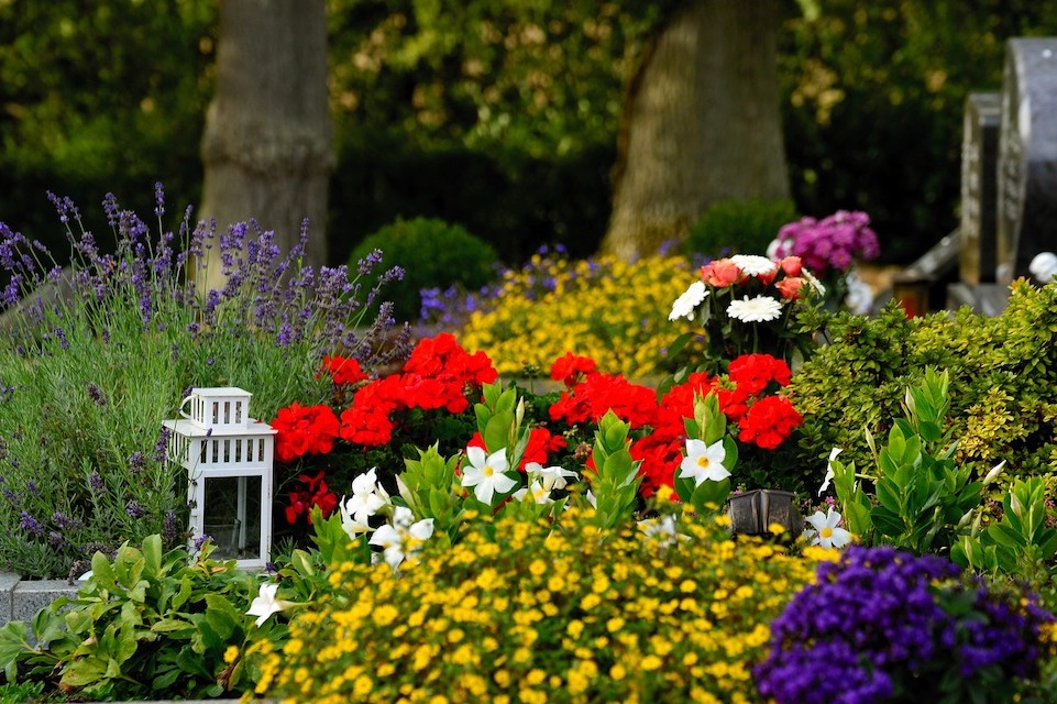 Image of grave surrounded by flowers